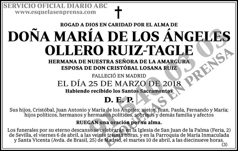María de los Ángeles Ollero Ruiz-Tagle